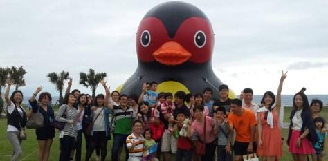 七星潭遊客看到紅面鴨好驚喜