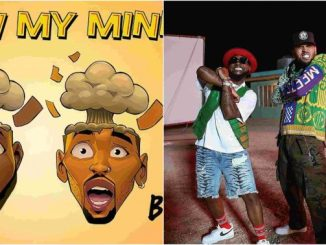 Chris Brown paid for Davido Blow my Mind video
