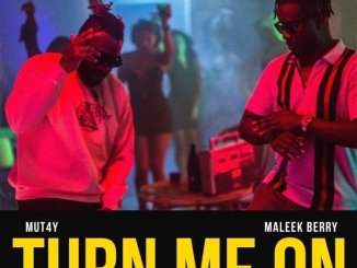 Mut4y Ft. Maleek Berry – Turn Me On