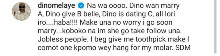 Dino Melaye reacts to news of him dating, impregnating or marrying a certain Actress