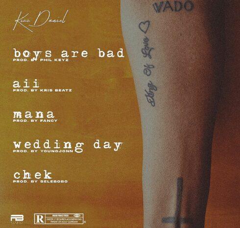 Kizz Daniel – Wedding Day Audio