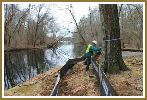 A worker installs an erosion and sediment fence to prevent runoff into the Saugatuck River and Poplar Plains Brook. The large tree will be protected during the construction process.