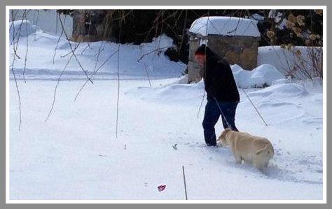 When a dog's gotta go... (Photo by Bobbi Essagof)