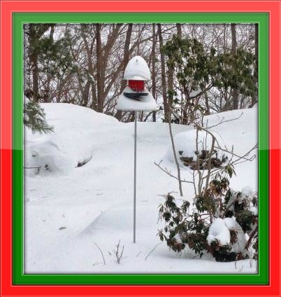 Larry Perlstein's birdhouse was nearly buried.