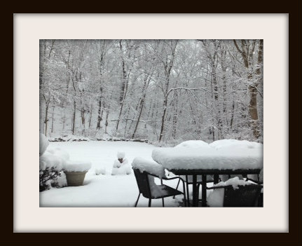 Westport snow 2012 by Diane Lowman