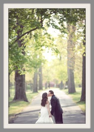 Longshore trees frame this wedding photo by Victoria Souza.