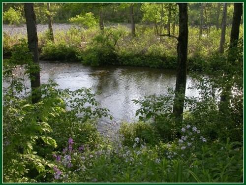 A river runs through Philip Perlah's back yard.