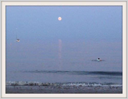 Super moon - Mark Edwards