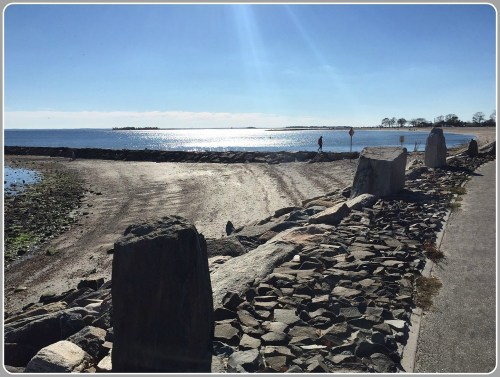 Compo Beach - November 8, 2015