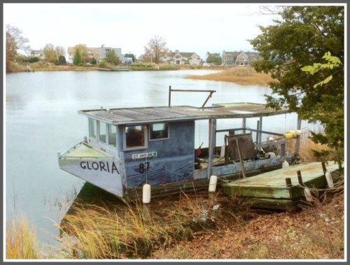 Gloria, on the Gray's Creek shore. (Photo/Bruce McFadden)