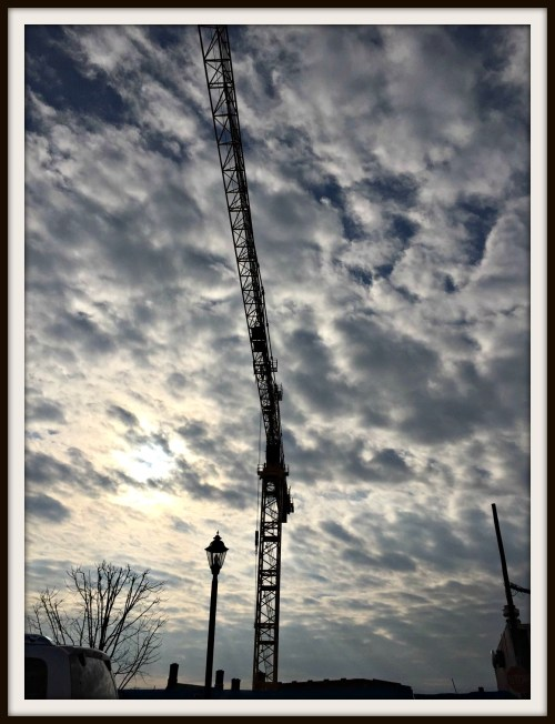 Crane - December 12, 2015