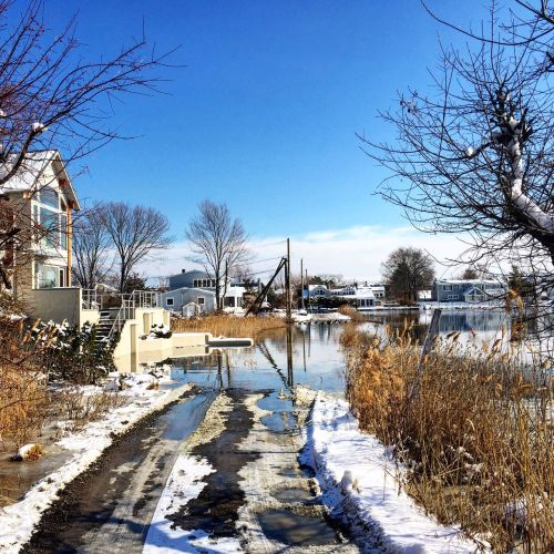 Saugatuck Shores flooding 3 - Feb 9 2016 - Betsy P Kahn