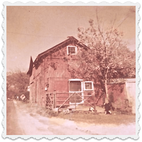 Walt and Mary Allen had 5 children. This photo shows Abigail, their oldest (Cap's grandchild), in front of the barn that once stood tight against Hillspoint Road on the edge of the Clam House property. The barn -- which still stands -- was rustic inside, but furnished with a full kitchen and a 2nd-floor loft. Cap used it as a popular summer rental property.