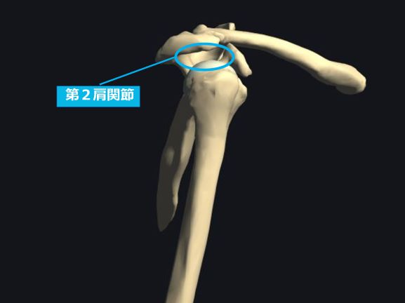 9693f1b2b0a738e702ba1c45e4ac904a - 四十肩・五十肩の症状と原因|3つの時期に合わせたストレッチや運動方法を徹底解説!