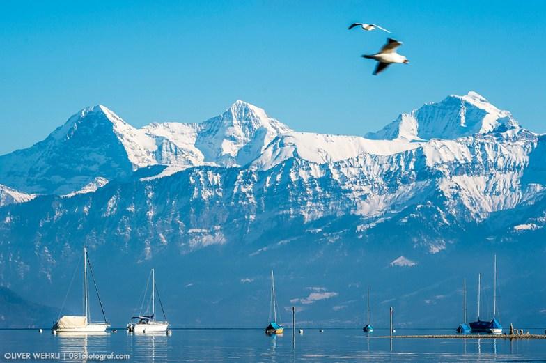 Thunersee mit Blick auf Eiger, Mönch & Jungfrau