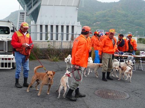 イノシシ捕獲犬猟技会 17頭が山野で能力競う 地位向上と育成めざす