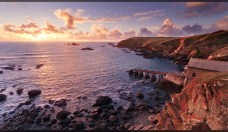 lizard_point_ii_by_geckokid-d32xf8x