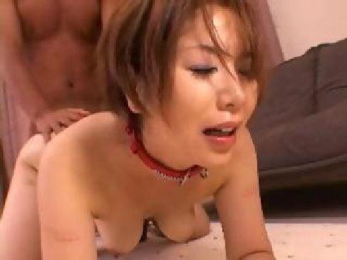 四十路熟女の翔田千里が飼い犬に扮装しながらオス犬に熟女のおまんこを舐め回され激しくセックスするzyukuzyotv