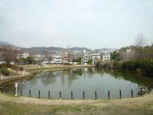 樋之池公園プール(手っちゃん)