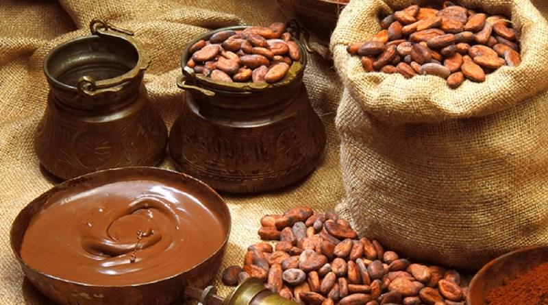 Plantas y alimentos nativos, claves para la seguridad alimentaria