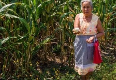 Rescatar el campo, una realidad de bienestar para todas y todos