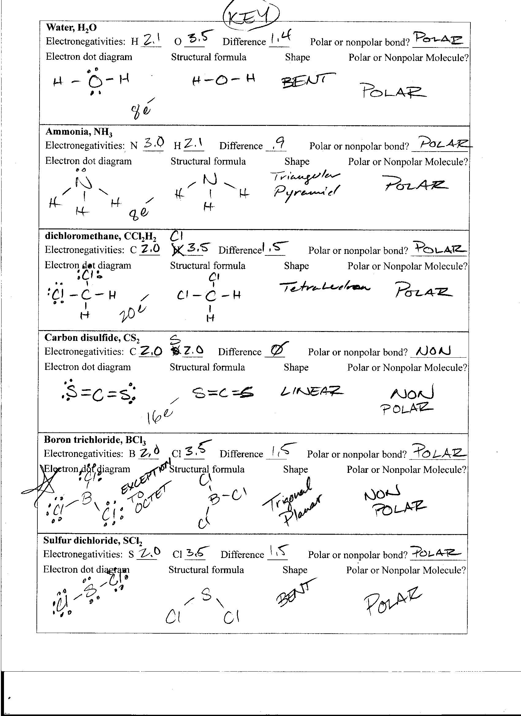 Ph Amp Poh Russian Answer Work Sheet Worksheets Tutsstar Thousands Of Printable Activities