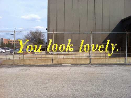 Typography Fence Art by Lambchop
