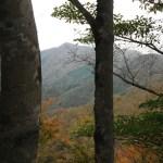 丹沢「加入道山」(西丹沢自然教室より畦ヶ丸経由用木沢周回)