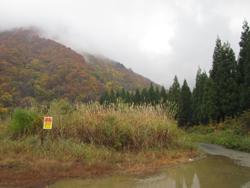土樽登山口