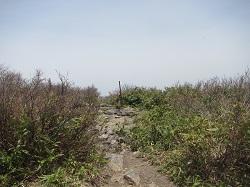 七ヶ岳山頂