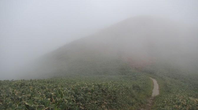 日本二百名山「仙ノ倉山」(松手ルート経由平元新道周回)