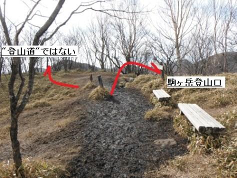 駒ケ岳登山口分岐