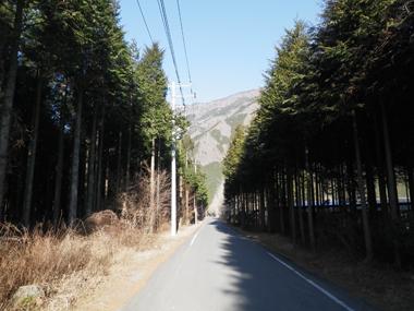 麓までの車道