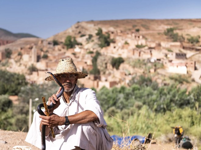 ancient, charmer, cobra, country, culture, enchanter, enchanting, ethnic, journey, man, marocco, morocco, music, people, player, rural, serpent, snake, tourism, tradition, traditional, travel, vacation