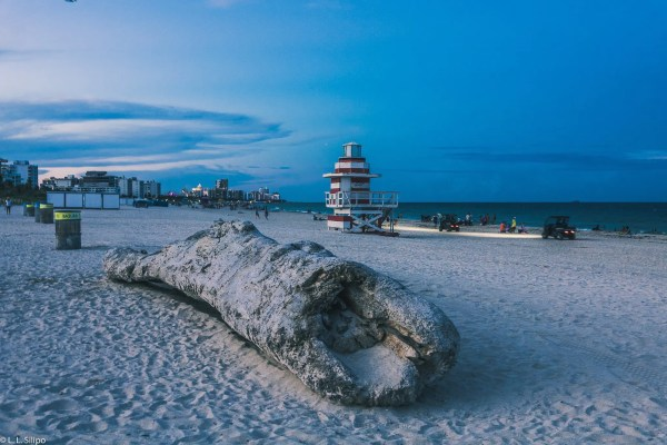 Miami best photography spots, america, art, atlantic, background, beach, beautiful, blue, colorful, deco, florida, lifeguard, miami, nature, ocean, outdoor, sand, sea, sky, south, summer, tower, travel, vacation, vibrant, water