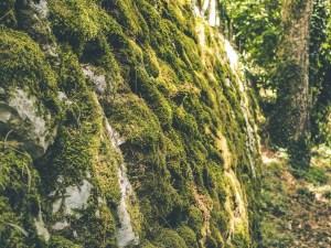Hiking on the Monti Aurunci, Itri
