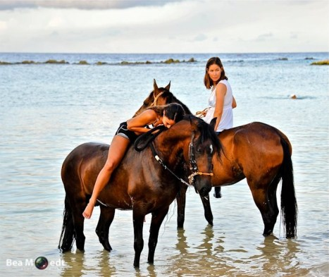 Swimming with Horses 10