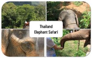 Thailand_collage_original-300x190