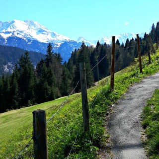 Hiking in the Bavarian Alps