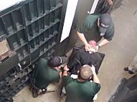 警官が拘束した容疑者にテーザーで電撃拷問。映像が公開され話題に。