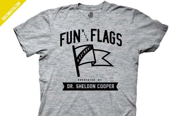 Camiseta fun with flags big bang theory
