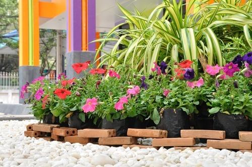 Melhorar-o-aspecto-do-jardim