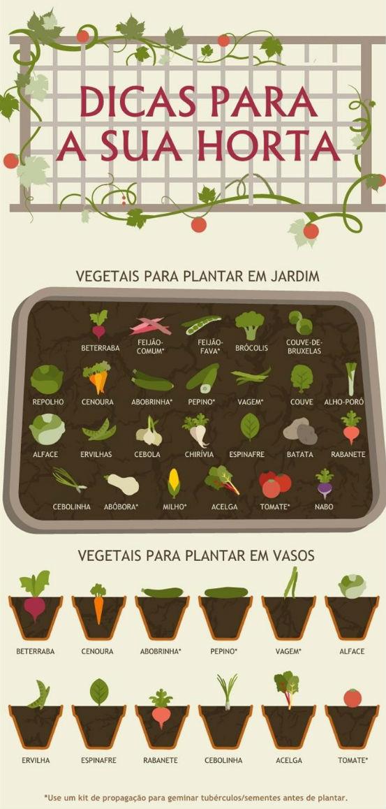 vegetais_em_casa1
