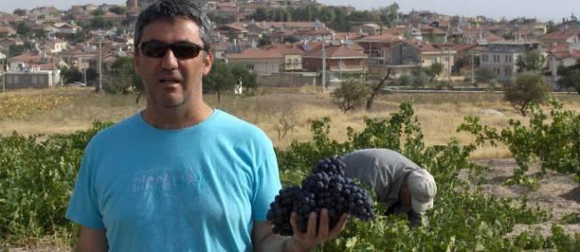 Murat Yankı