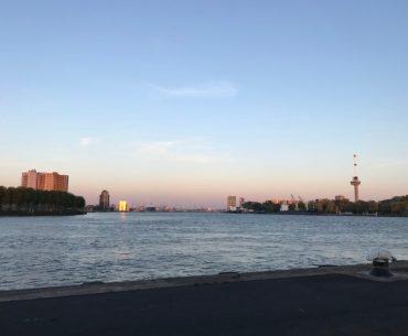 Cruiseshipspotting Rotterdam