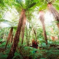 3 Fragen an die Neuseeland-Expertin Janine Spohr