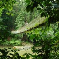 Ostküstenregion: Ein wahres Tropenparadies in Malaysia