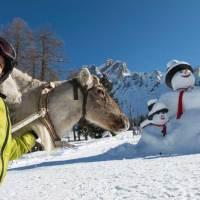 Schneespaß für jedes Alter in der Dolomitenregion Drei Zinnen
