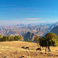 Fünf eindrucksvolle Reiseziele, die im Gedächtnis bleiben