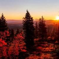 Herbst-Blues